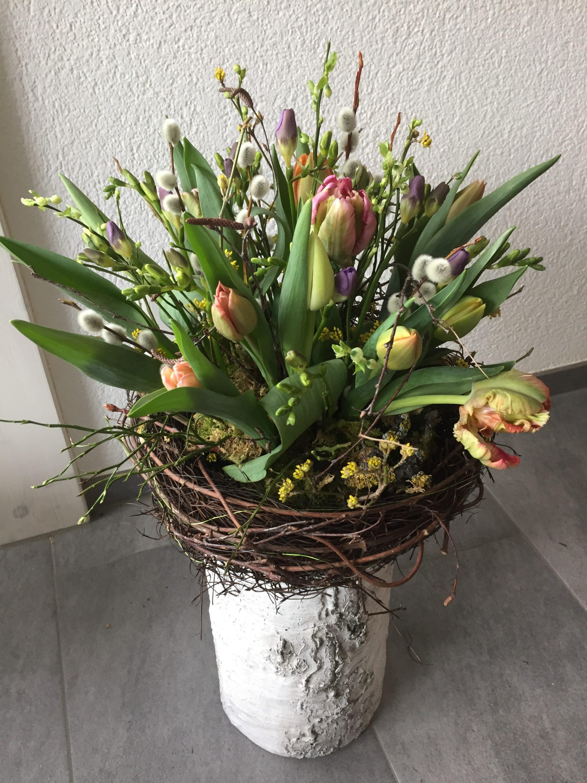 Frühlingsnest