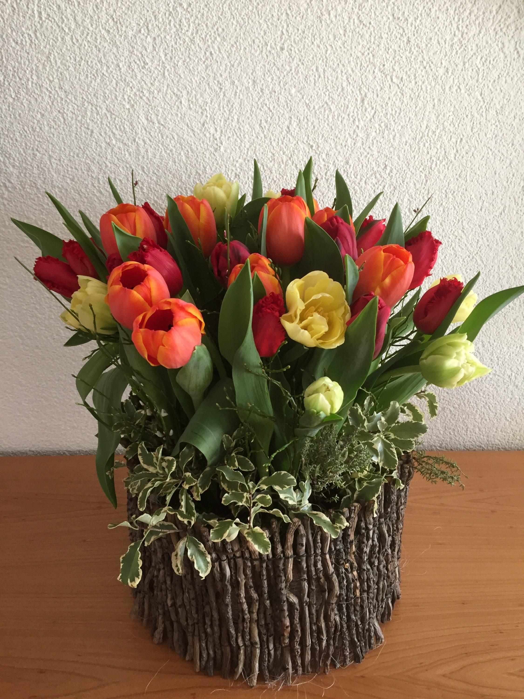 Tulpen im Astmantel